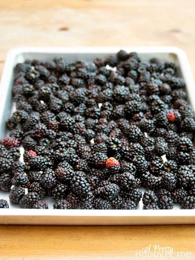 blackberryonsheet