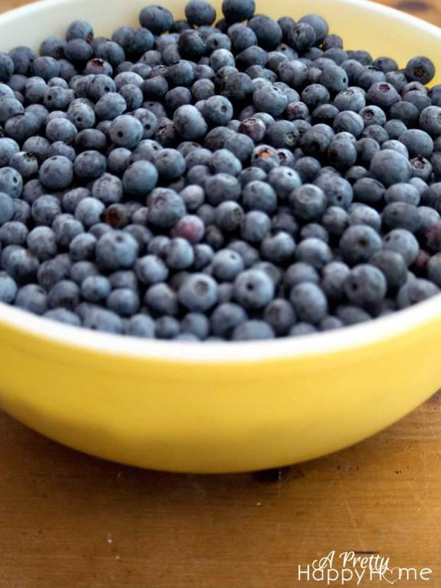 blueberryinbowl