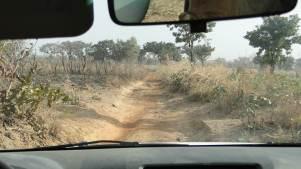 En route pour le village de Sargo à 15 km de Copargo (1/2 heure de piste assez étroite).
