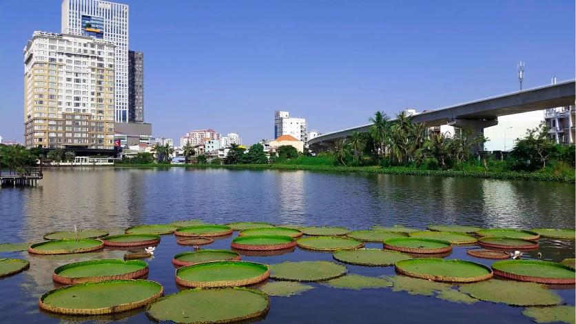 Nha Hang Cam Chuong (Ho Chi Minh City/Saigon, Vietnam) copy
