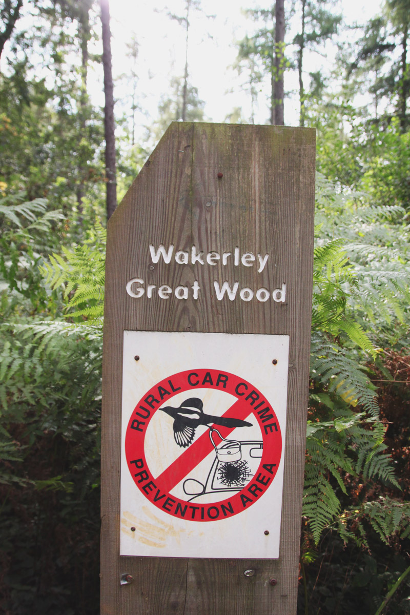 Wakerly Woods