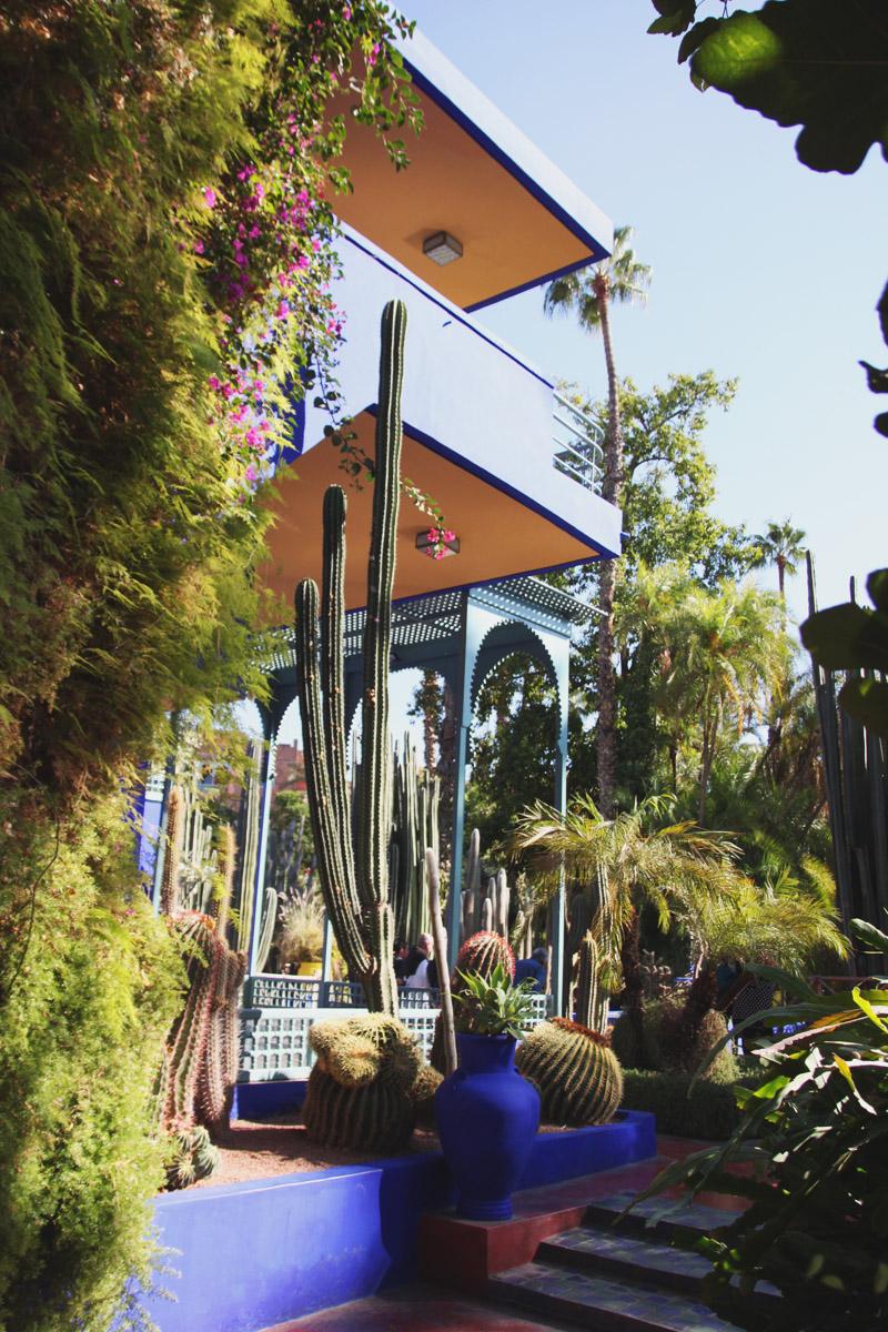 Exploring the gardens of jardin majorelle marrakech for Restaurant jardin marrakech