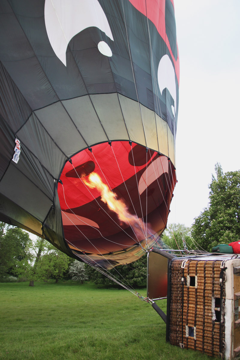 Ladybird Hot Air Balloon