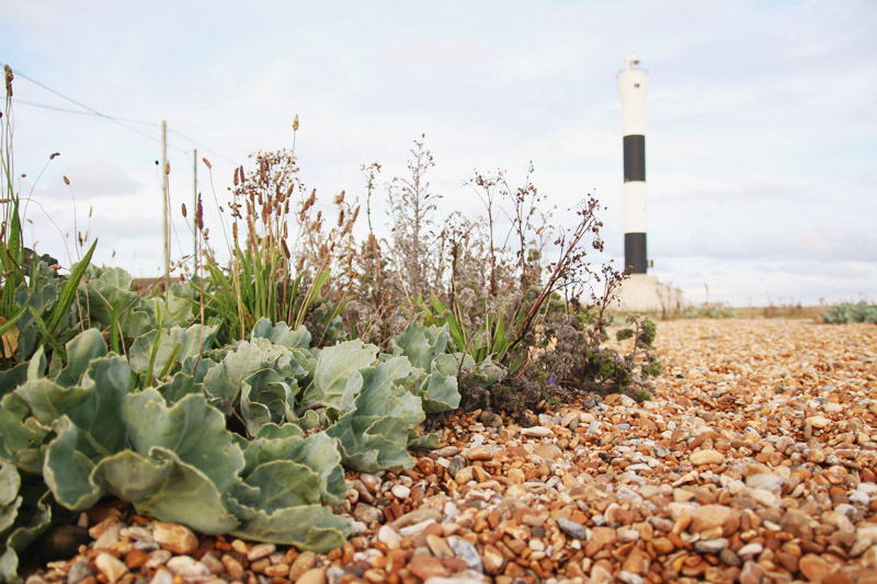 Dungeness Lighthouse