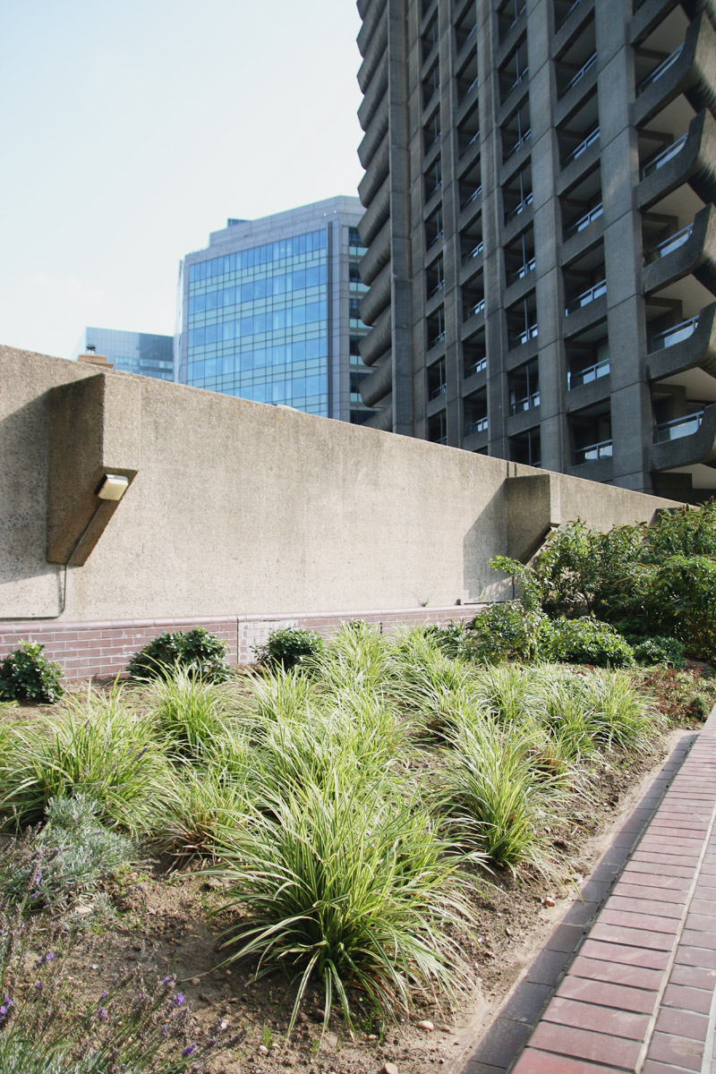 The Barbican Centre, London