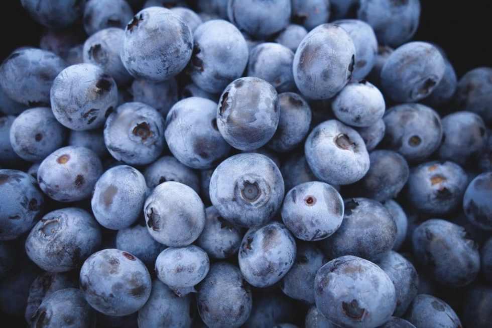 blueberries-690072_1280