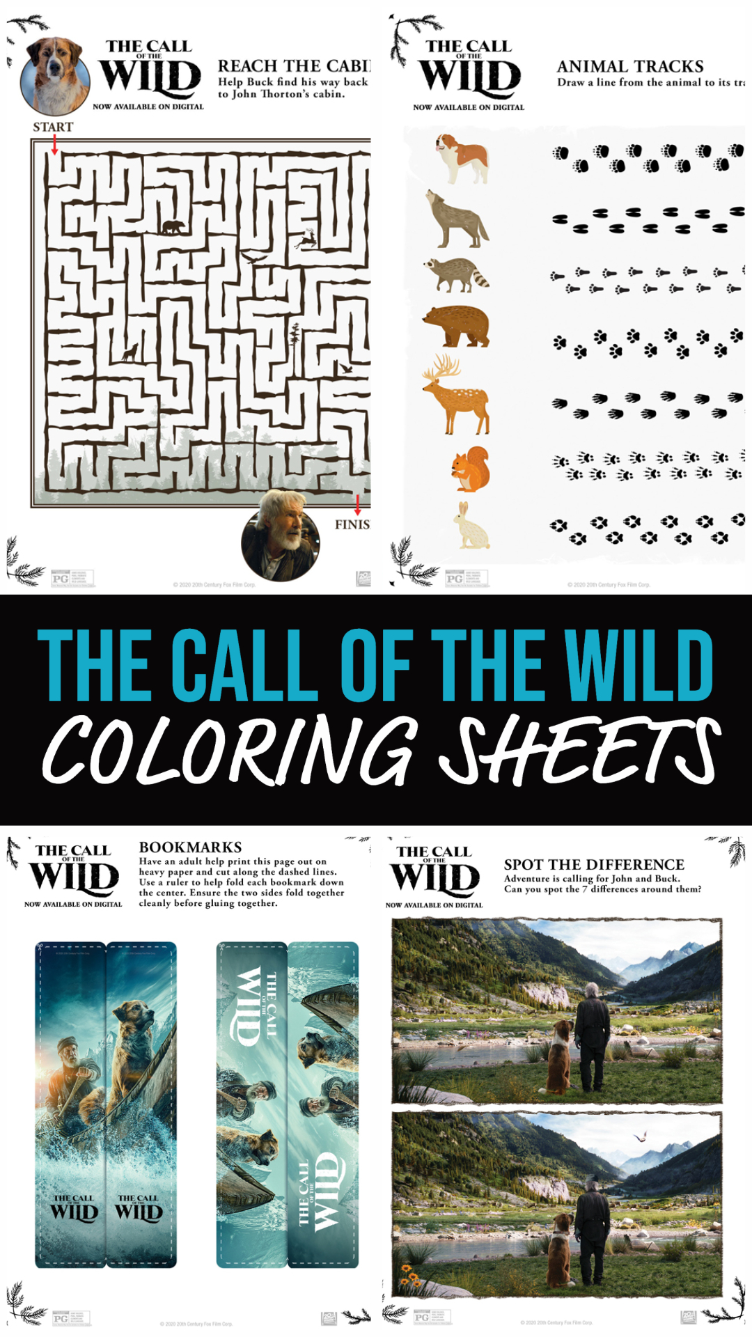 The Call Of The Wild Activity Sheets