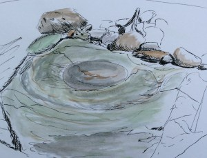 Sketch of a tide pool