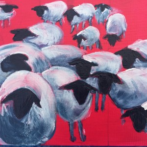 sheep on red background