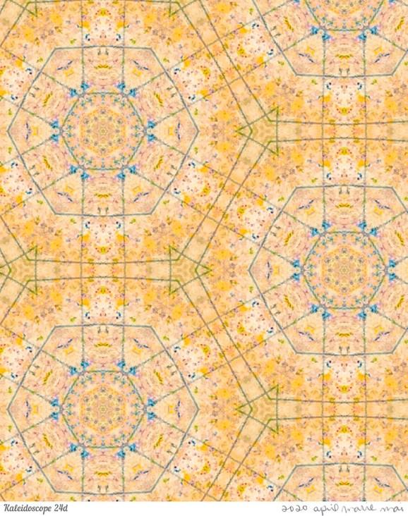 Kaleidoscope 24 Detail Print