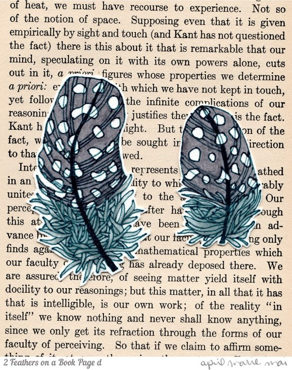 2 Feathers on a Book Page Detail Print