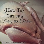 How to Cut up a Turkey or Chicken