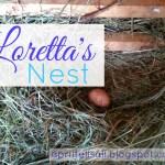 Loretta's Nest