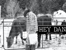 Hey Dan…