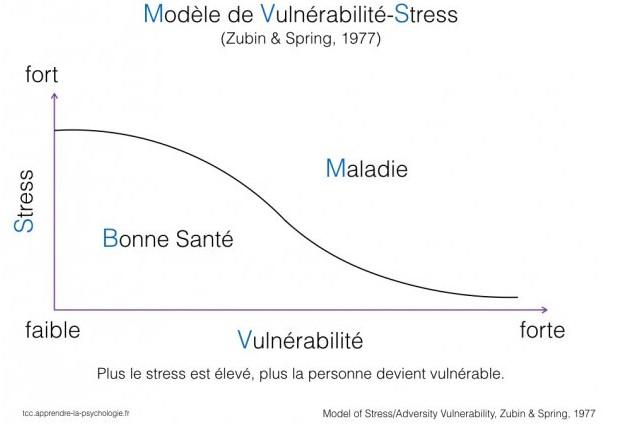 stress et vulnérabilité