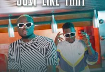 Mr Dutch – Just Like That Ft Lava Lava