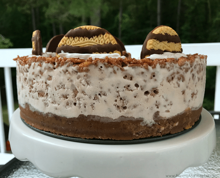 Triple Layer Fudge Ice Cream Cake