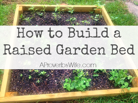 How to Build a Raised Vegetable Box