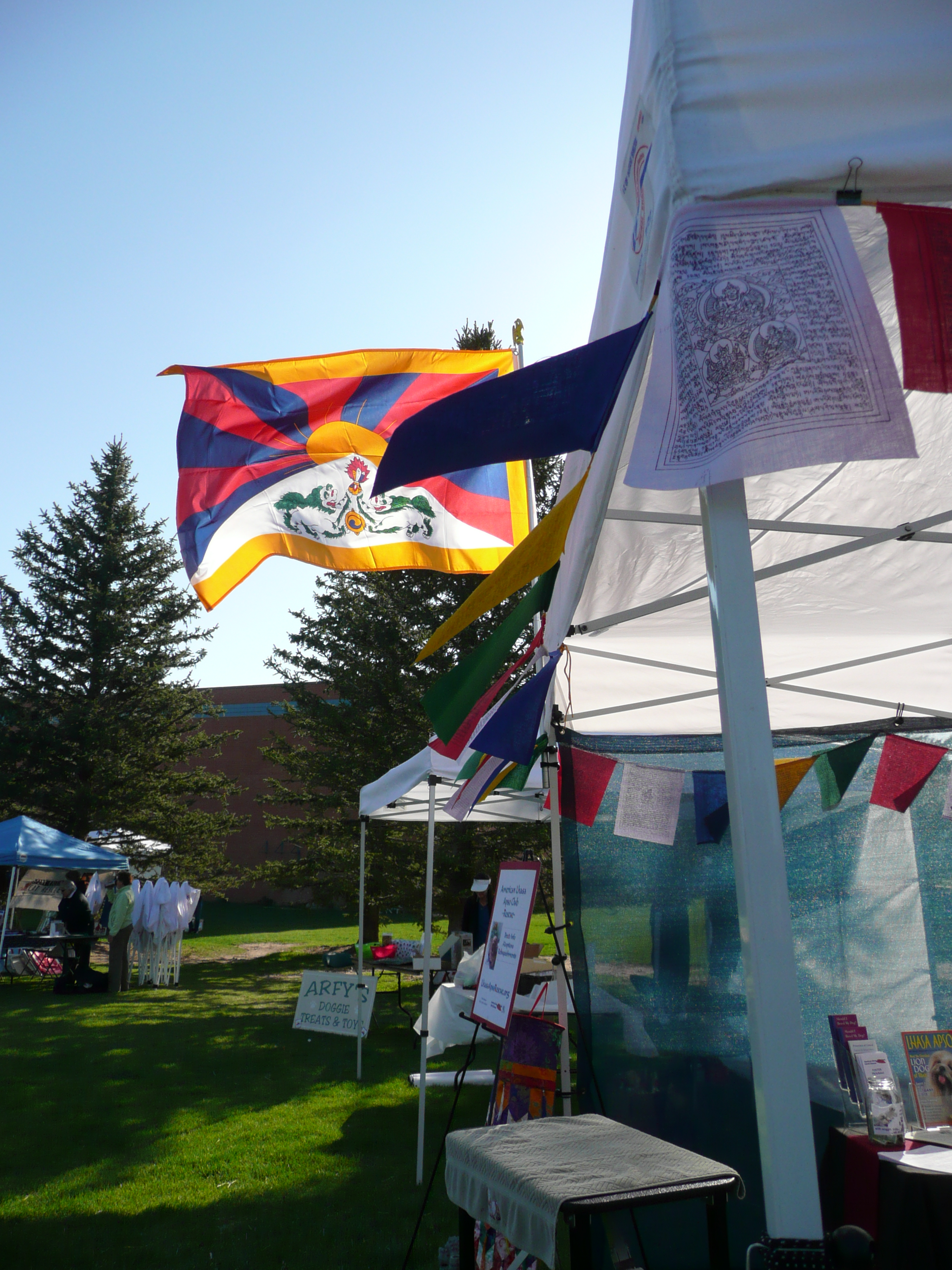 Just enough breeze to show off our Tibetan colors!