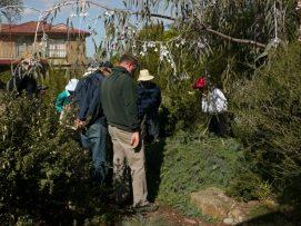 Mill Park garden visit - Photo J. Lulham