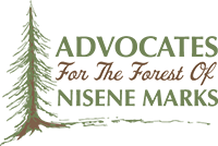 Help Dust Off the Nisene Marks Fire Road