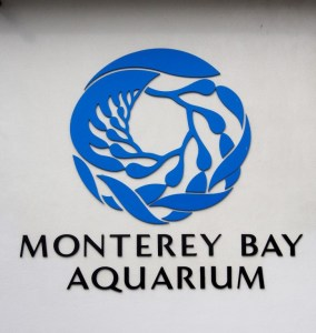 Free Passes to Monterey Bay Aquarium