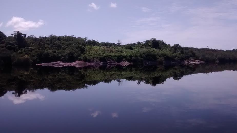 Rio Negro (foto Natalia Viana)