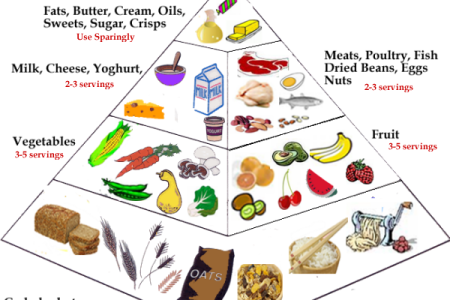 purelandmountain com myplate nutrition introduction review activities educational it explains the purpose of myplate each of the food groups servings what