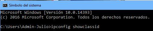 ipconfig_showclassid