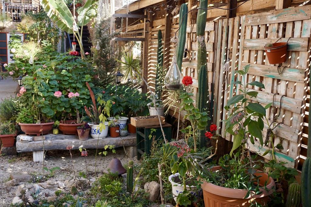 Jardín del Hostal Valle Mistral