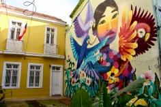 Renacer, Anis. Calle Cumming, Valparaíso