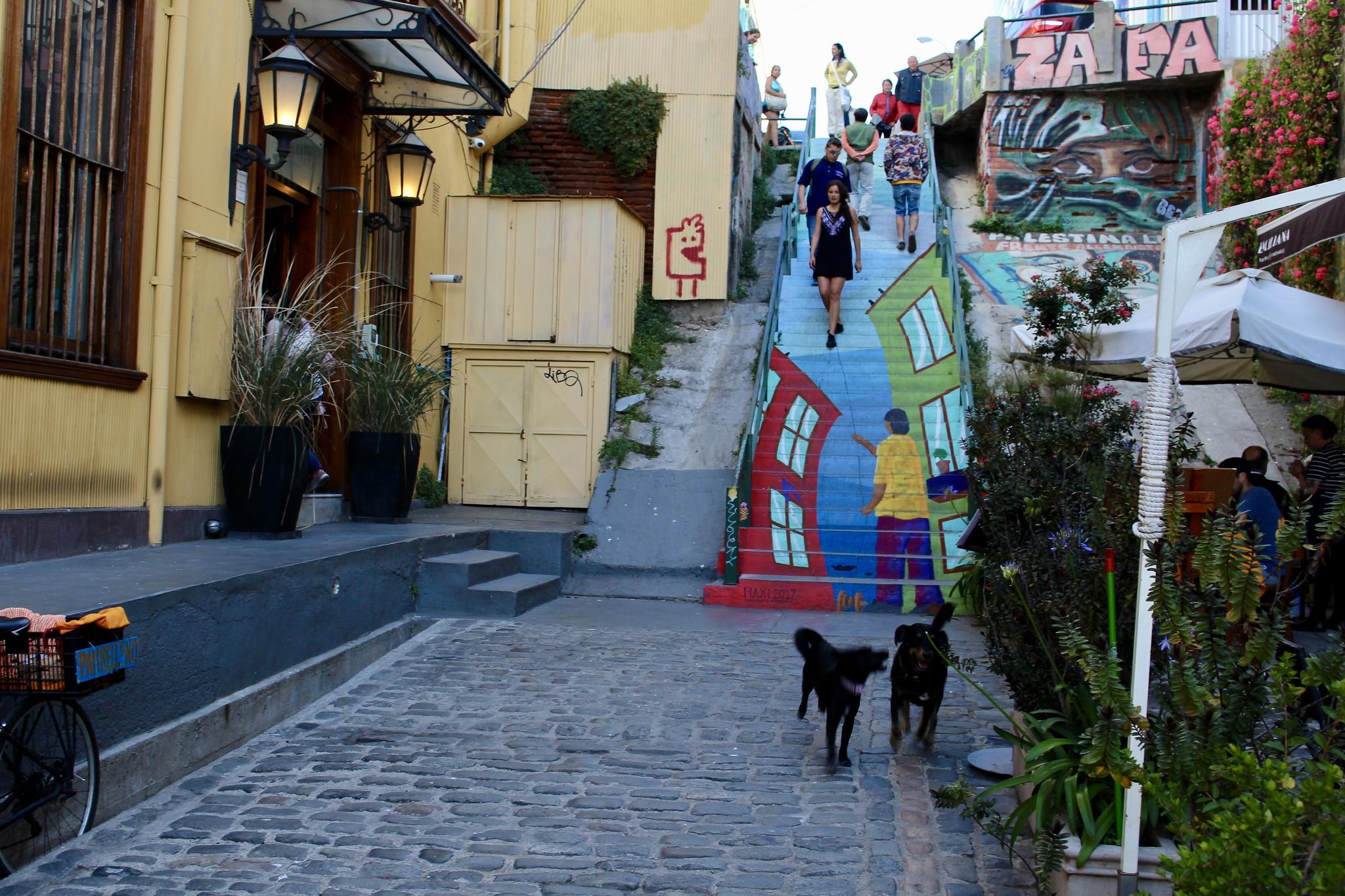 Calle Papudo, cerro Concepción