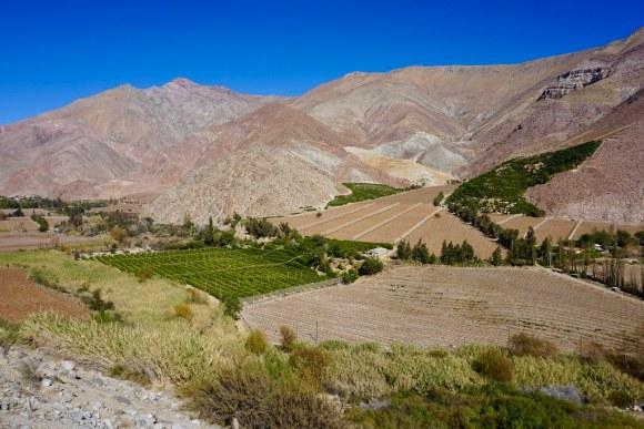 Paihuano, Valle de Elqui