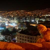 Los gatos de Valparaíso
