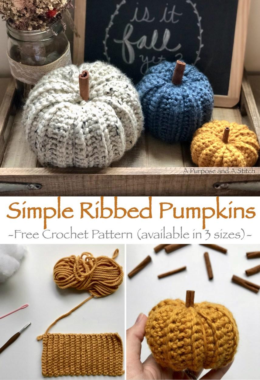 Simple Ribbed Pumpkins.jpg