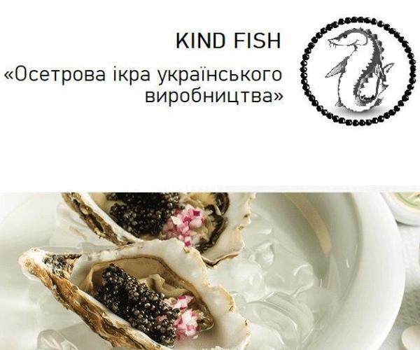 Kind Fish