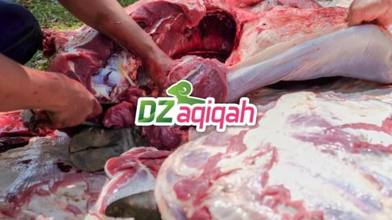 Harga Domba Untuk Kurban Di Purwakarta