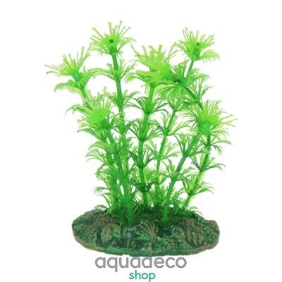 Купить Искусственное растение Aqua Nova NP-10 08078, 10см в Киеве с доставкой по Украине