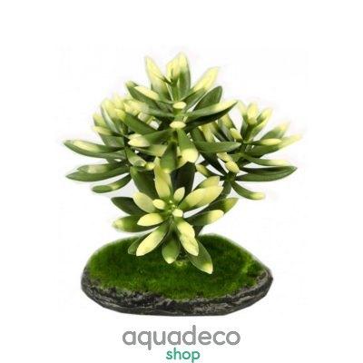 Купить Искусственное растение Aqua Nova REP17015, 15см в Киеве с доставкой по Украине