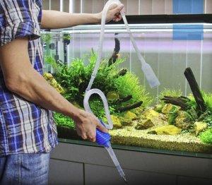Подмен воды в аквариуме