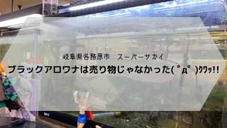 スーパーサカイ 岐阜県各務原市