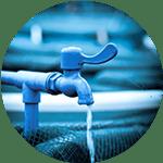 life holding system aquaculture