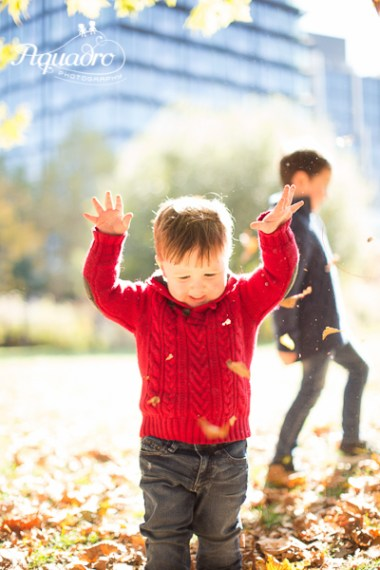 brothers in blue and red dancing in fall leaves in brooklyn