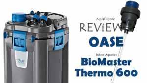 OASE Indoor Aquatics Biomaster Thermo 600