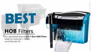 Best HOB filters for Aquarium