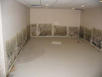 Image Result For Ba T Waterproofing Service