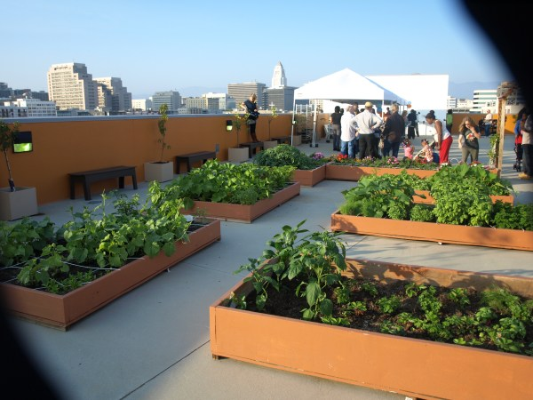 rooftop garden One Room Challenge: Week 1- aquahaus gets a Rooftop Lounge