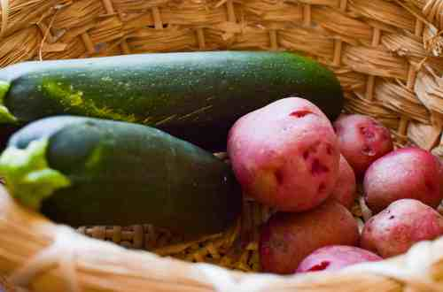 easy to grow veggies in a basket