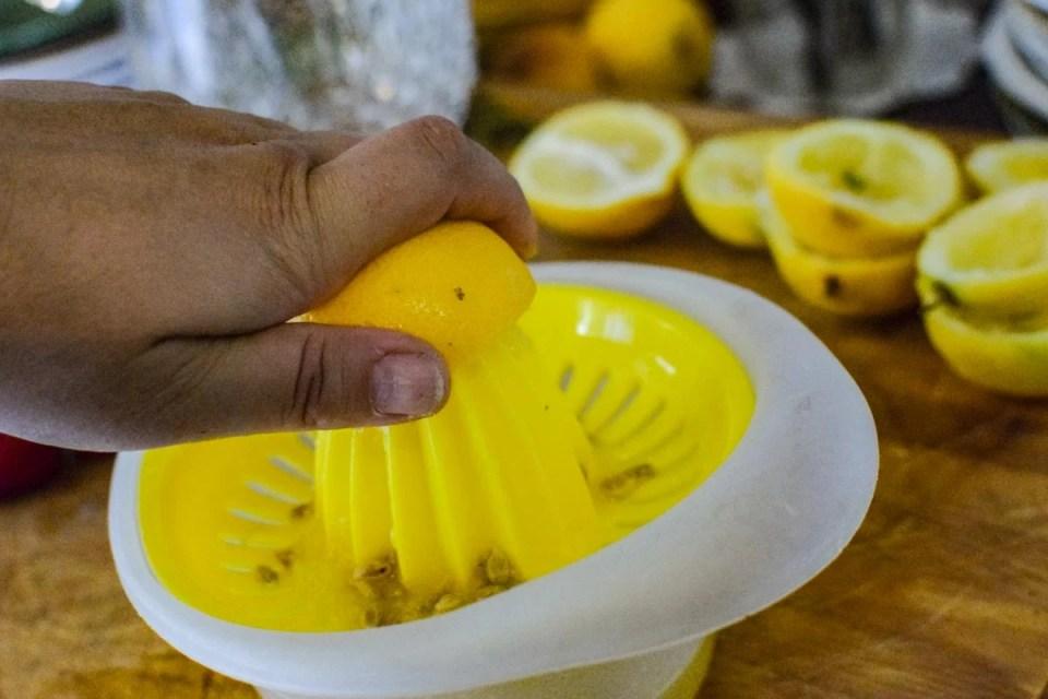 squeezing lemons for lemonade