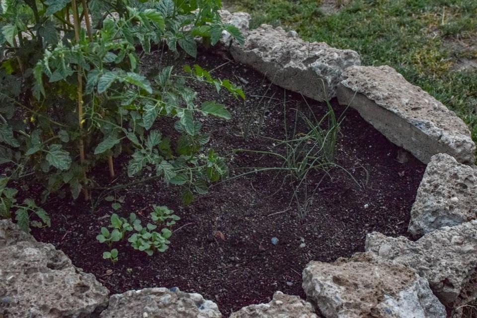 rock style garden bed